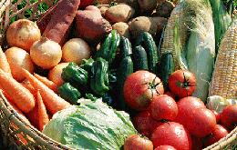 あんずの自社農場産野菜がたっぷり